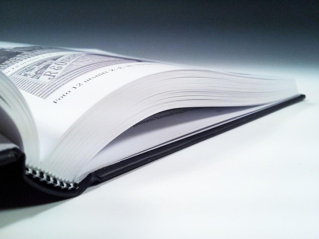 Årbok for Dalane Folkemuseum nr. 19 (2011-2012) nærbilde
